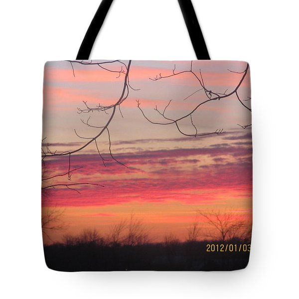 Tote Bag featuring the photograph Sunset In Winter by Tina M Wenger