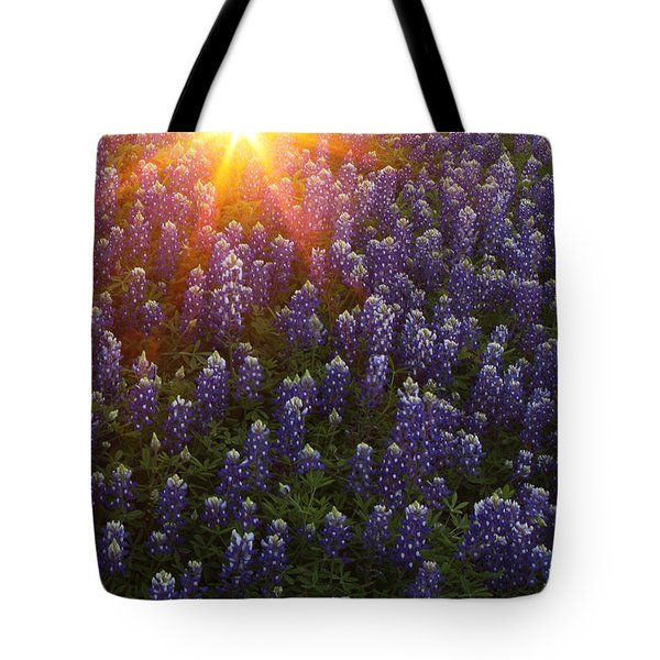 Tote Bag featuring the photograph Sunset Over Bluebonnets by Susan Rovira