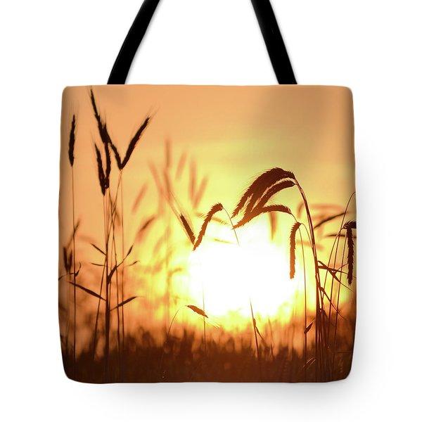 Sunset Rye IIi Tote Bag