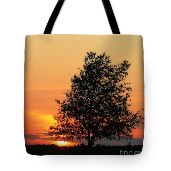 Sunset Square Tote Bag by Angela Rath