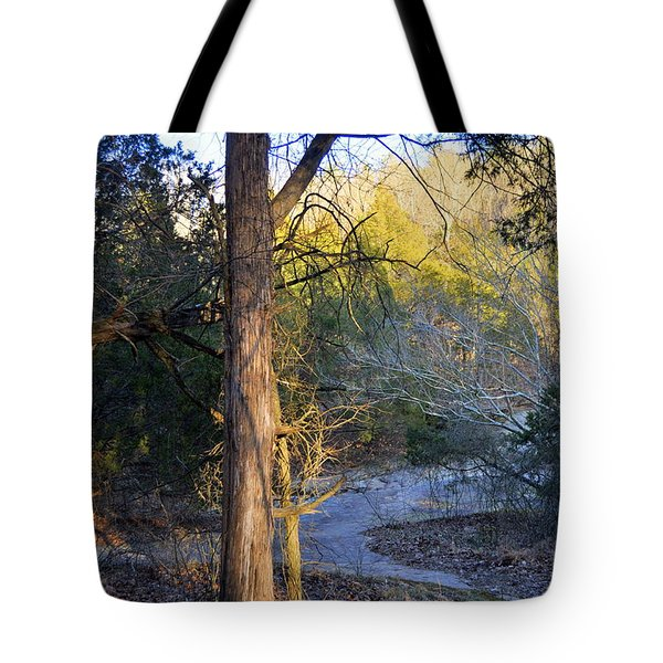 Sunset Tree Tote Bag by Marty Koch