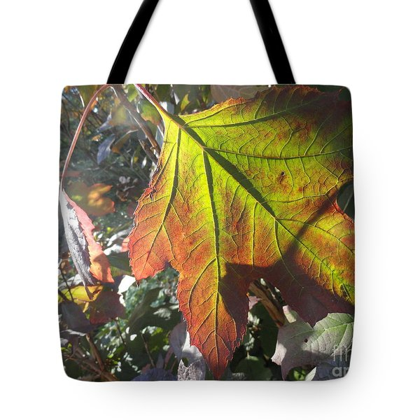 Surrender Tote Bag by Trish Hale
