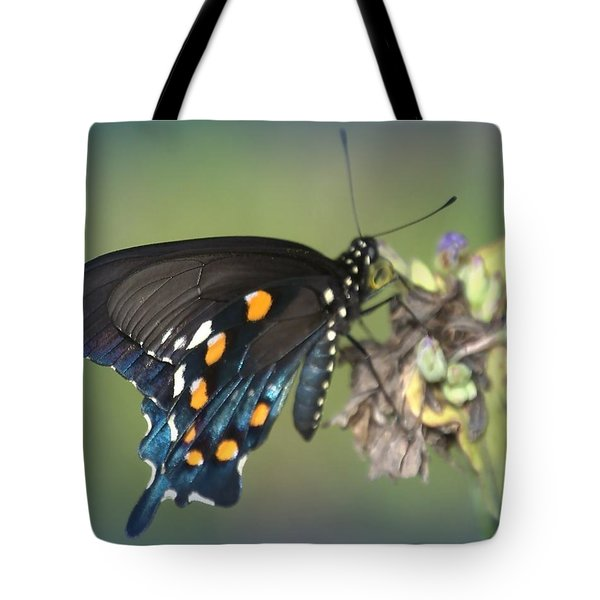 Tote Bag featuring the photograph Swallowtail 1 by Judy Hall-Folde