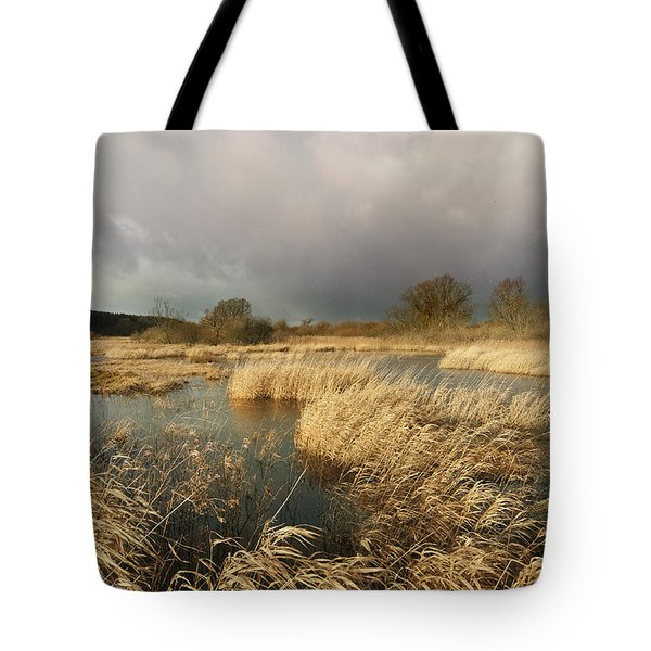 Swampland Tote Bag by Robert Lacy