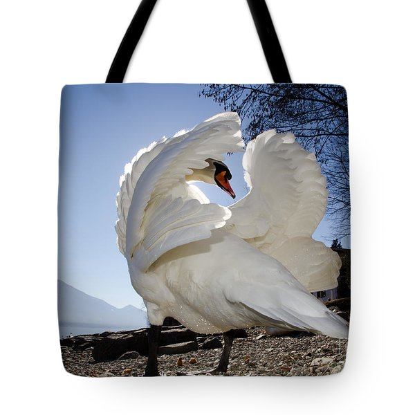 Swan In Backlight Tote Bag