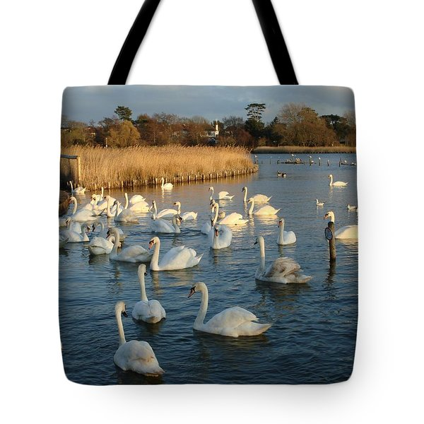 Tote Bag featuring the photograph Swan Lake by Katy Mei