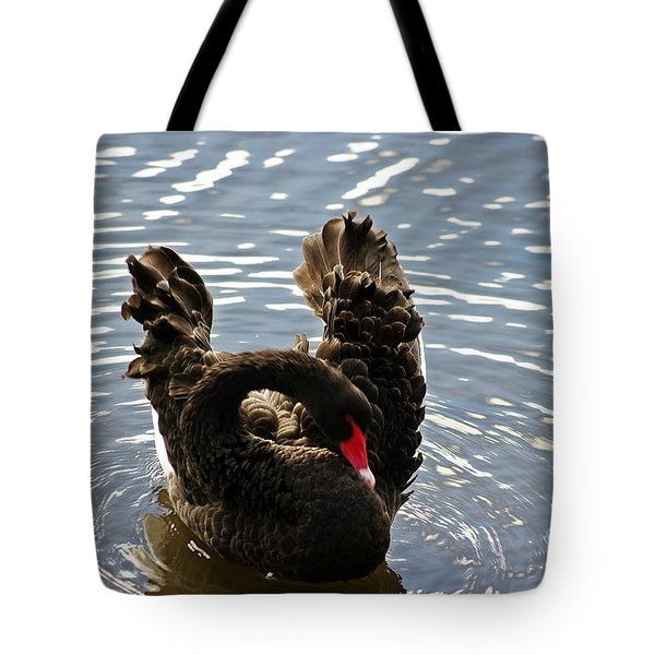 Swan Preening Its Feathers Tote Bag by Blair Stuart