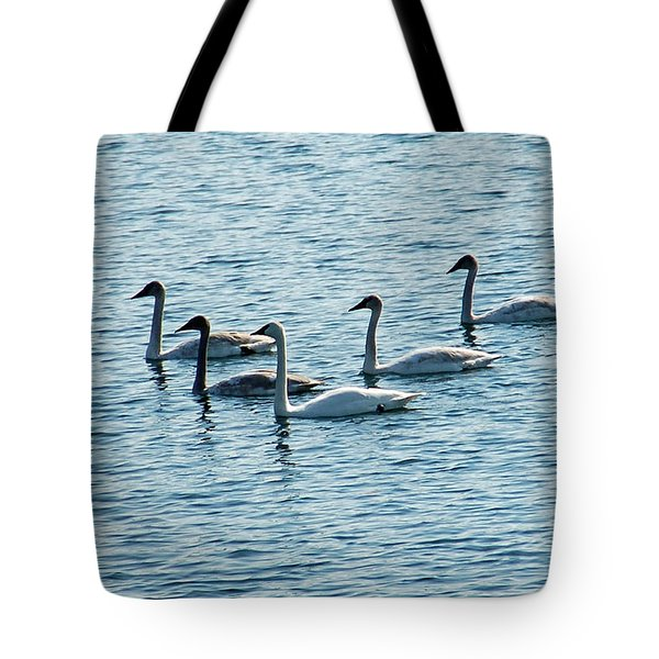 Swans Swimming Tote Bag by Aimee L Maher Photography and Art Visit ALMGallerydotcom