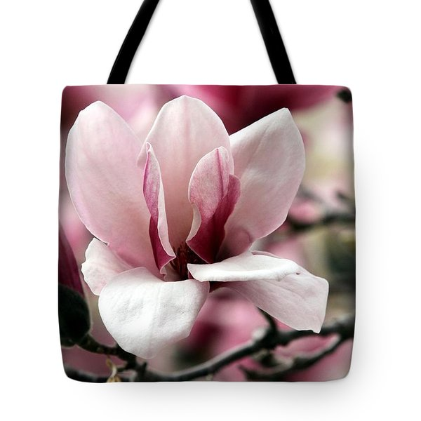 Sweet Magnolia Tote Bag by Elizabeth Winter