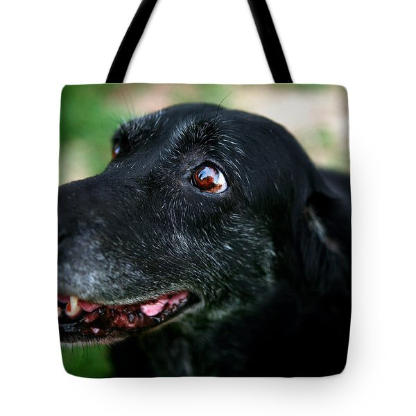 Tote Bag featuring the photograph Sweet Mariah by Lon Casler Bixby