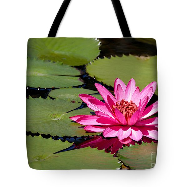 Sweet Pink Water Lily In The River Tote Bag by Sabrina L Ryan