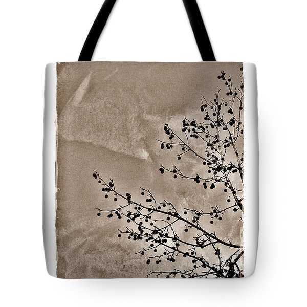 Sweetgum Sepia Tote Bag by Judi Bagwell