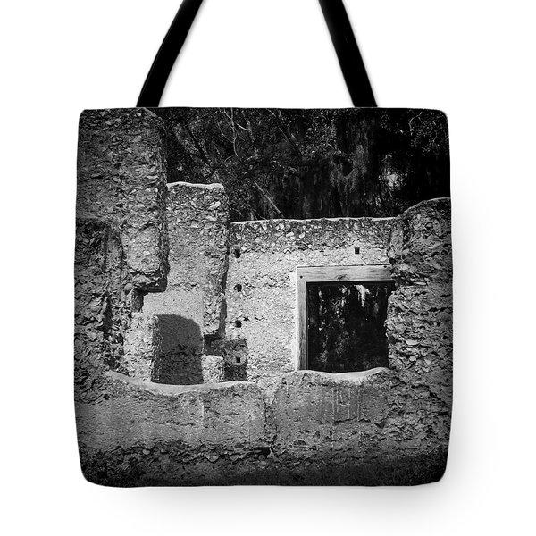 Tabby Ruins Tote Bag by Lynn Palmer