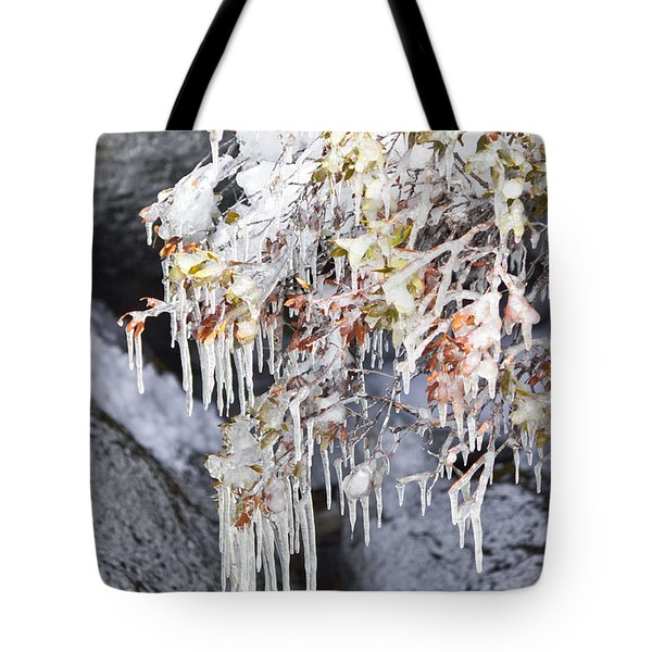 Tahoe Bush Icicles Tote Bag
