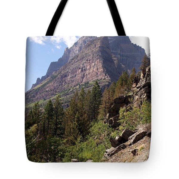 Tail In Glacier Tote Bag by Marty Koch