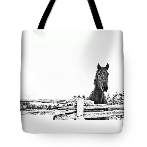 Tote Bag featuring the photograph Take Me For A Ride by Traci Cottingham