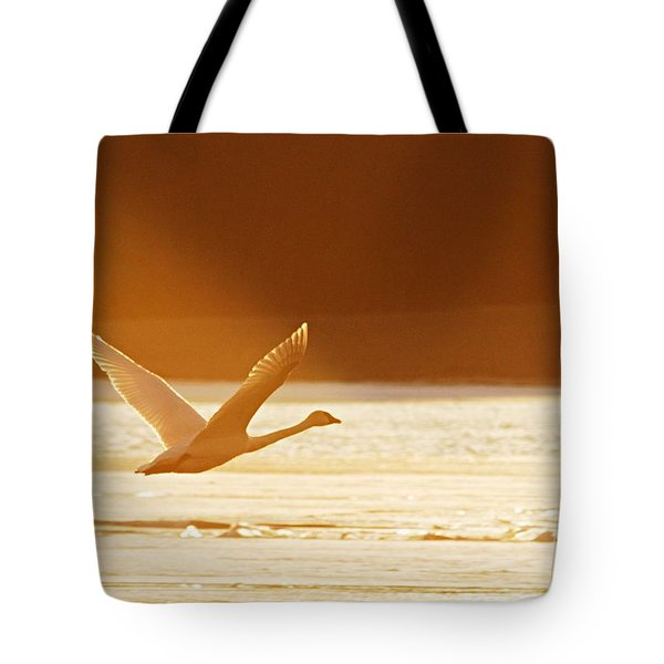 Takeoff At Sunset Tote Bag by Larry Ricker