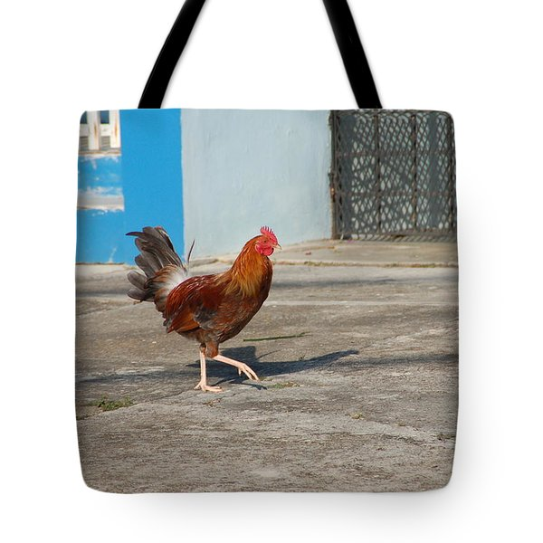 Takin A Step Tote Bag by Aimee L Maher Photography and Art Visit ALMGallerydotcom