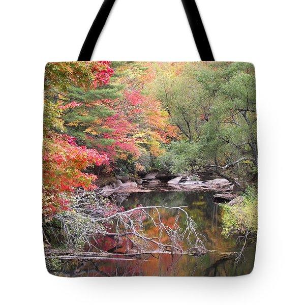 Tanasee Creek In The Fall Tote Bag