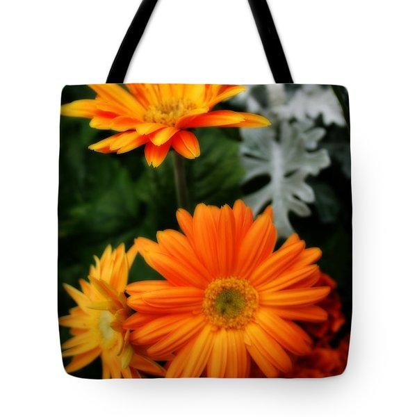 Tangerine Colored Gerbera Daisies Tote Bag by Kay Novy