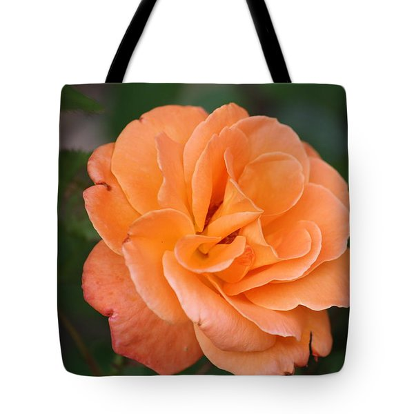 Tangerine Rose Tote Bag