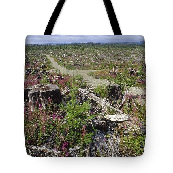 Temperate Rainforest Clear Cutting Tote Bag