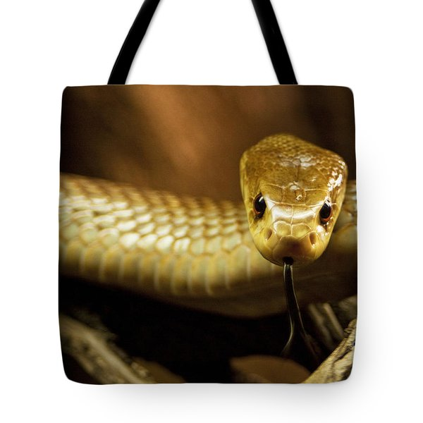Tempter Tote Bag by Andrew Paranavitana