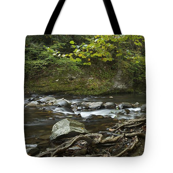 Tennessee Stream Panorama 6045 6 Tote Bag by Michael Peychich