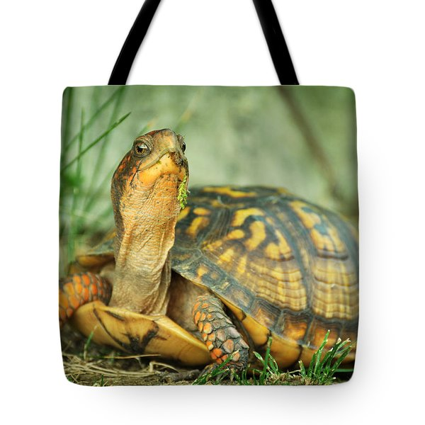 Terrapene Carolina Eastern Box Turtle Tote Bag