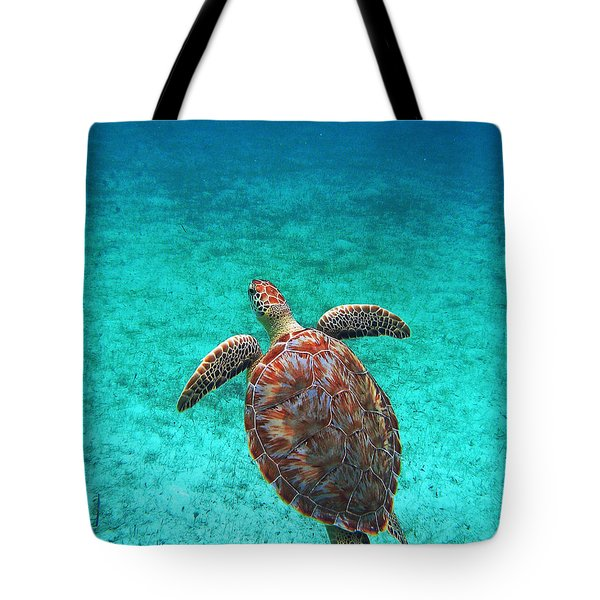 The Ascension Tote Bag by Li Newton