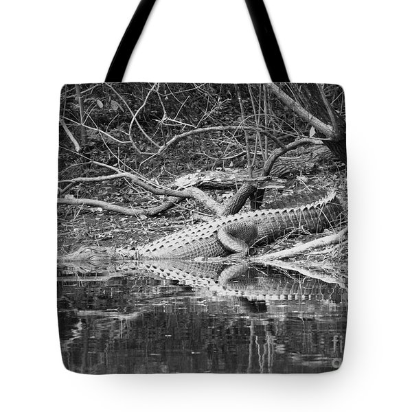 The Beast That Lives Under The Bridge Tote Bag by Carol Groenen