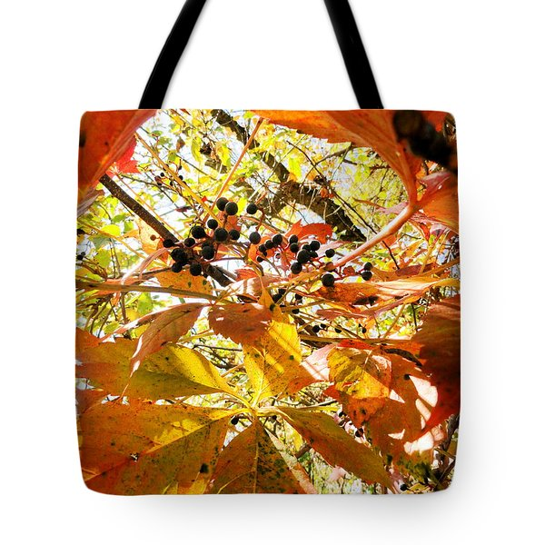 The Beauty In Dying Tote Bag by Trish Hale
