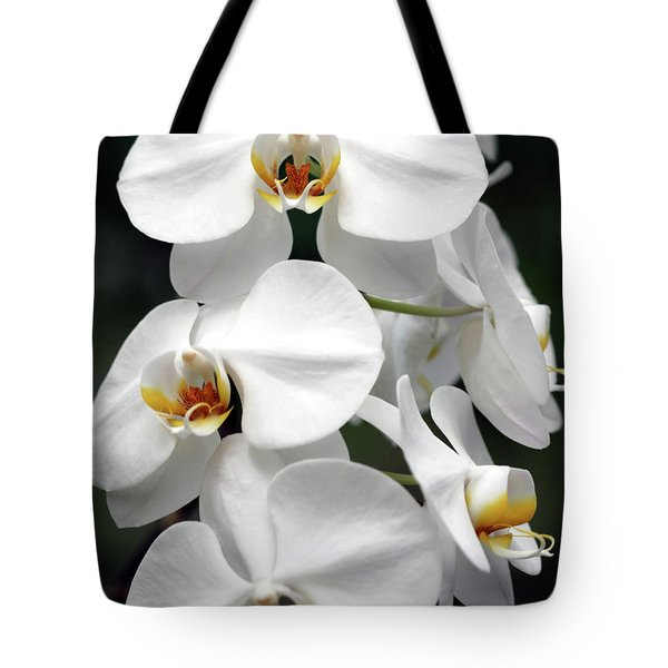 The Beauty Of Orchids  Tote Bag