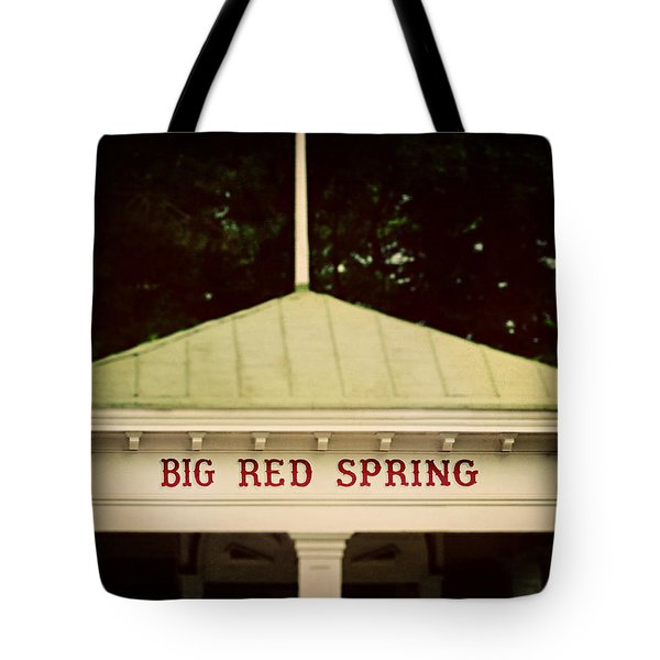 The Big Red Spring Tote Bag by Lisa Russo