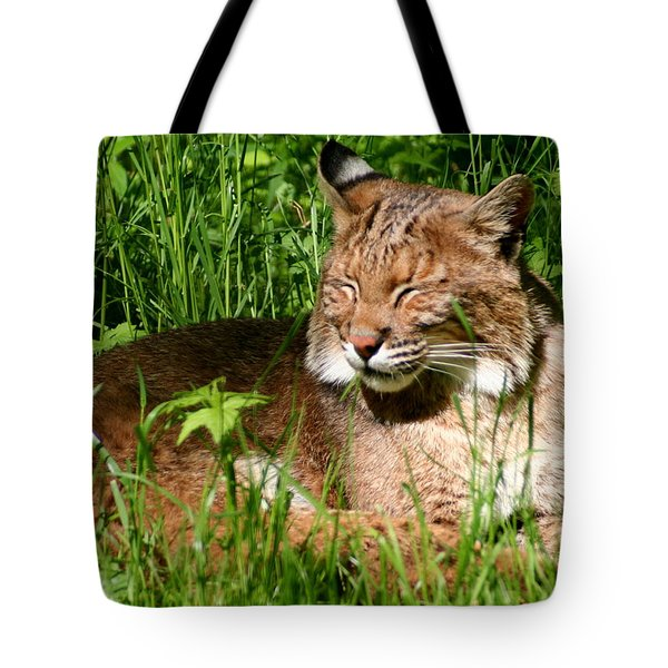 Tote Bag featuring the photograph The Bobcat's Afternoon Nap by Laurel Talabere