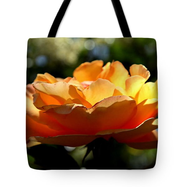 The Bronze Star Tote Bag by Karen Wiles