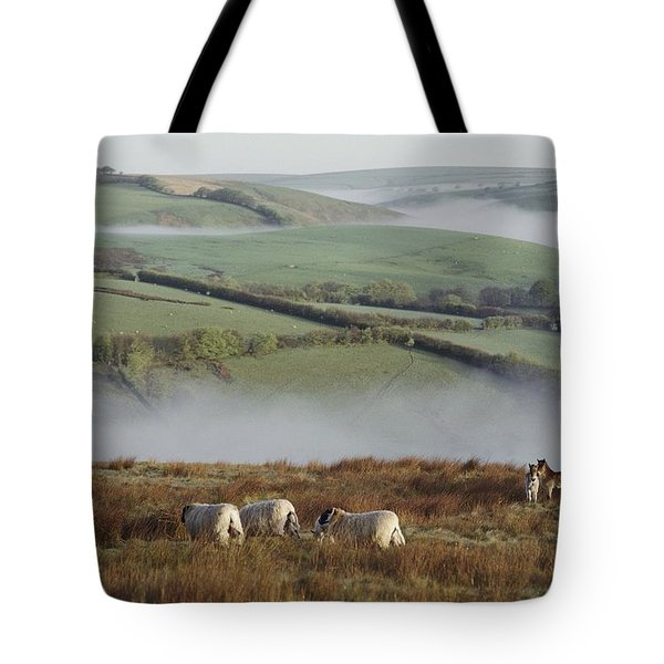 The Captions For Rolls 48-61 Read Tote Bag