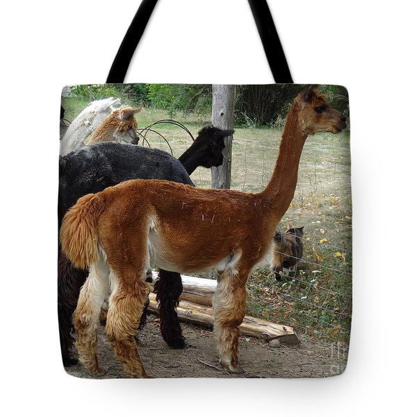 The Cat Came Back Tote Bag