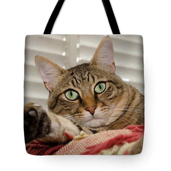 The Cat With Green Eyes Tote Bag