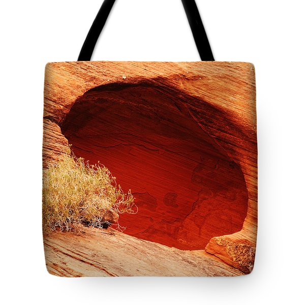 The Cave Tote Bag by Vivian Christopher