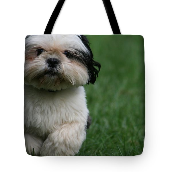 The Champion Tote Bag by Valia Bradshaw