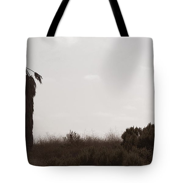 Tote Bag featuring the photograph The Chief by Lorraine Devon Wilke