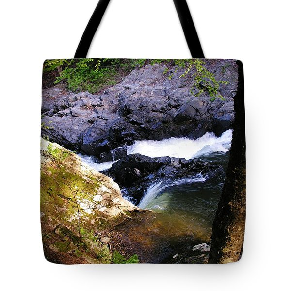 The Chutes At Union Village Tote Bag by Sherman Perry