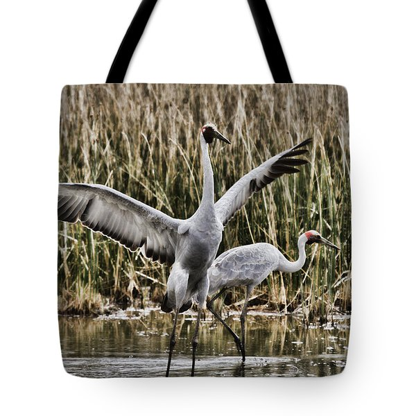 The Conductor Tote Bag by Douglas Barnard