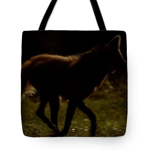 The Dark Side Tote Bag by Karol Livote