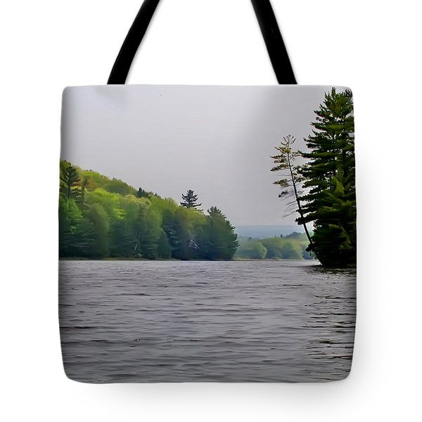 The Delaware River Tote Bag by Bill Cannon