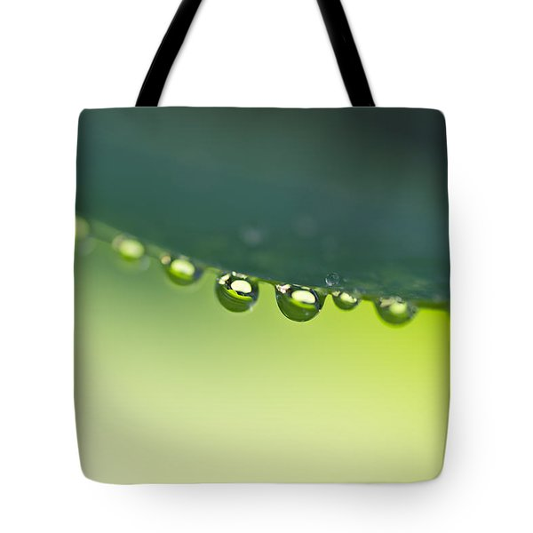 Tote Bag featuring the photograph The Edge I by Priya Ghose