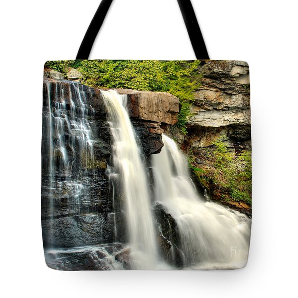 Tote Bag featuring the photograph The Face Of The Falls by Mark Dodd