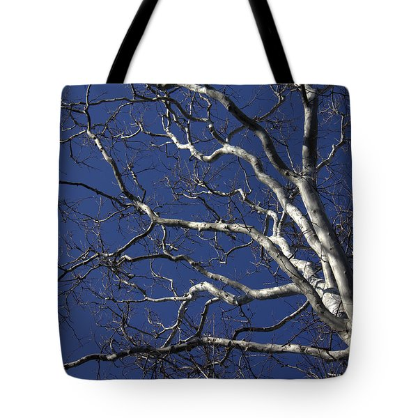 The Family Tree Tote Bag by Ed Smith
