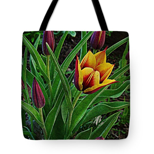 The First One Out Tote Bag by Chris Berry